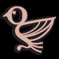 Novagraphica-logo-rosa
